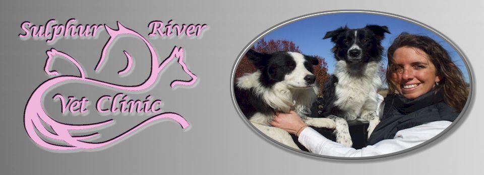 Sulphur River Veterinary Clinic